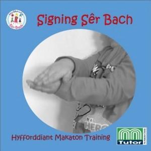 logo signing